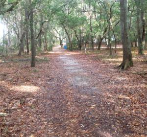walking trail in Snows Cut Park in Carolina Beach