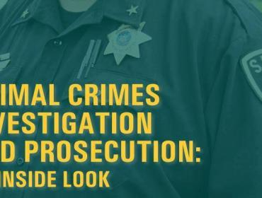 Animal Crimes Investigation And Prosecution: An Inside Look
