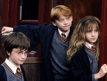 Harry Potter and the Sorcerer's Stone (TM) - In Concert