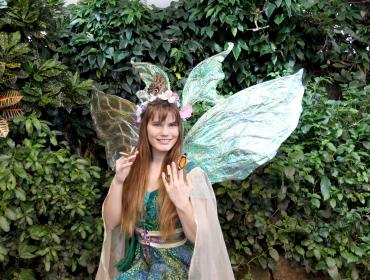 Fairy House Magic