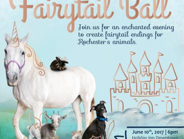 The Fairytail Ball Gala