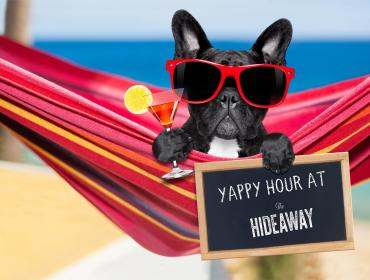 Yappy Hour at The Hideaway