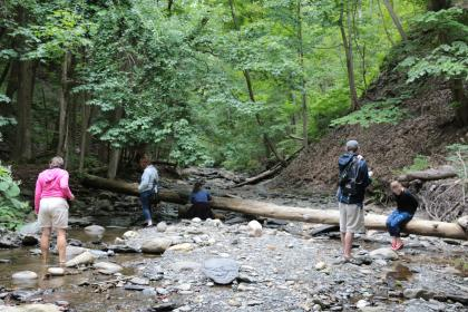 finger-lakes-forest-therapy-naples-group-explore