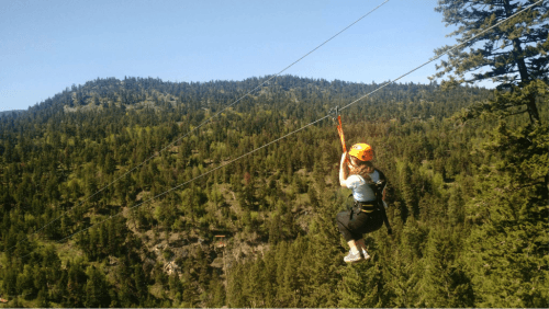 ZipZone Adventure Park
