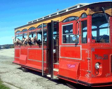Newport Travel Tours
