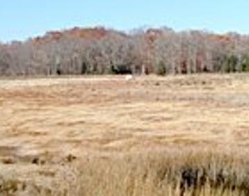Touisset Marsh