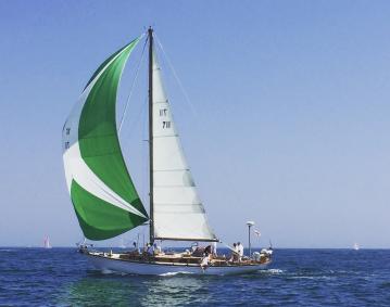 Newport Odyssey