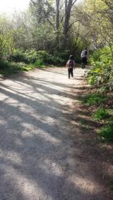 Discovery Park Blog Trails