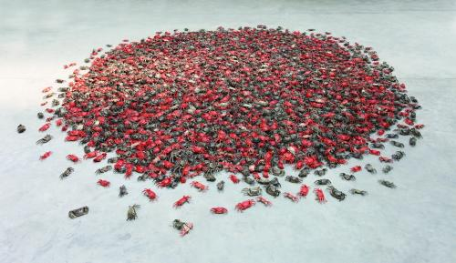 He Xie Collection of Materials, 2010