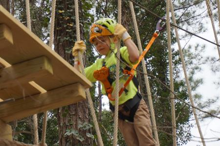 Treetop Quest Equipment