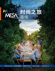 Chinese Itinerary Cover Image