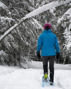 MP Snowshoe images