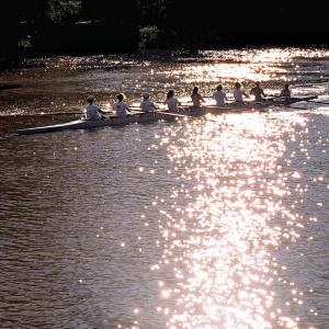 Head of the Genesee Regatta