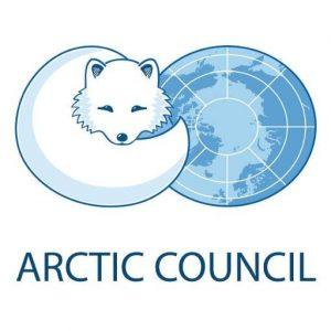 arctic council fox globe