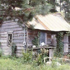 Keithfield Plantation