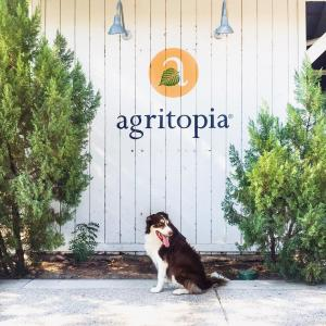 Agritopia Sign and Dog - Crowdriff
