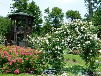 finger-lakes-sonnenberg-canandaigua-grounds-rose-garden-gazebo