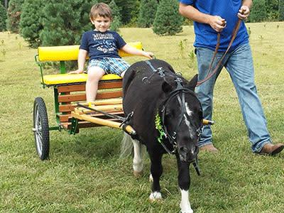 Hunters Pony Cart