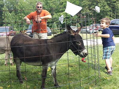 Hunters Donkeys