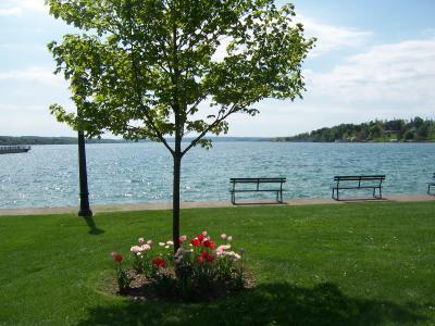 skaneateles-lake-scenic-flowers-sunshine