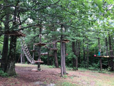 WildPlay Elements Park at Thacher Park