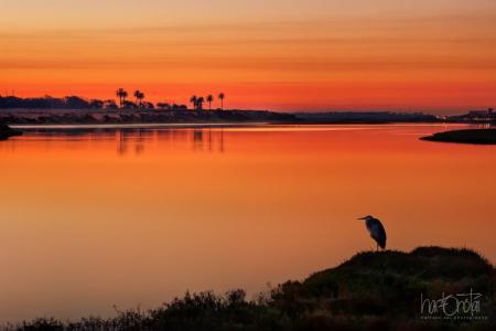 The wetland waters reflect the sunset perfectly! (Photo by Hartono Tai Photography)