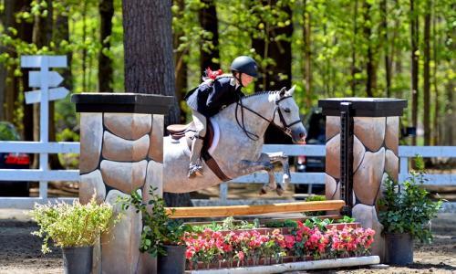 HorseShowJumping