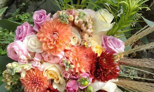 Saratoga Florist