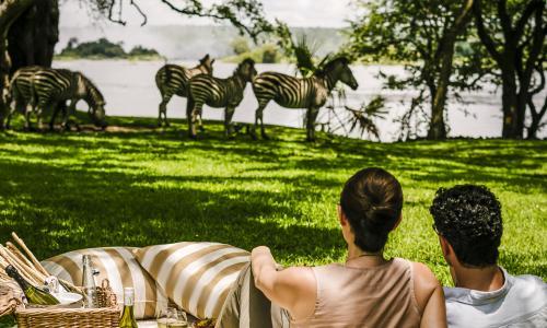 Live Life Travel Royal Livingston Victoria Falls