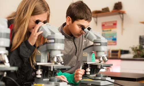 Saratoga Independent School kids with microscopes