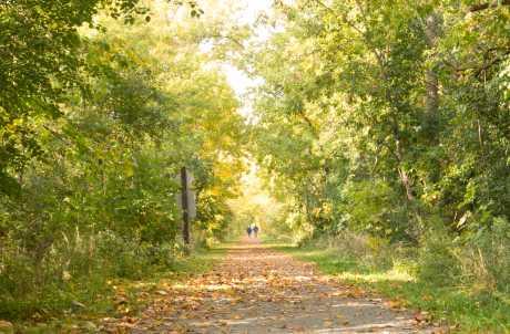Erie Canal Recreational Trail