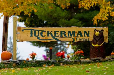 Tuckerman Farms in Cayuga County