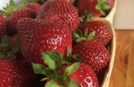 Strawberries until Frost