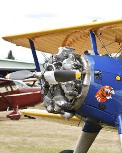 Pearson Plane