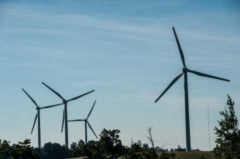 Fenner Wind Farm 1