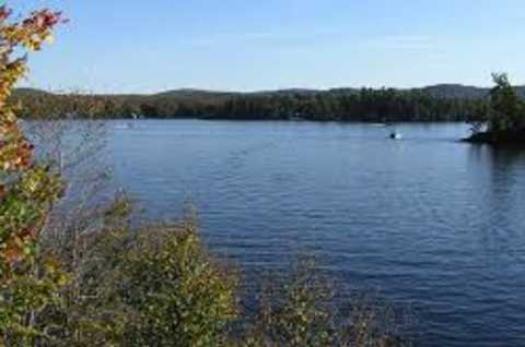 Stony Pond fishing