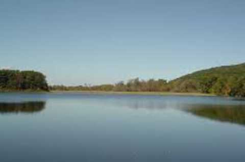 Eaton Brook Fishing