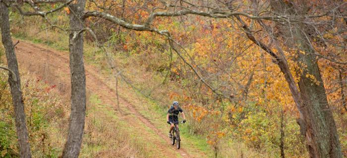 Mountain Biking Through Park
