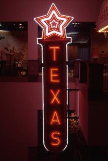 Texas Neon Sign