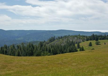 1715P3bald-hill-rd.jpg