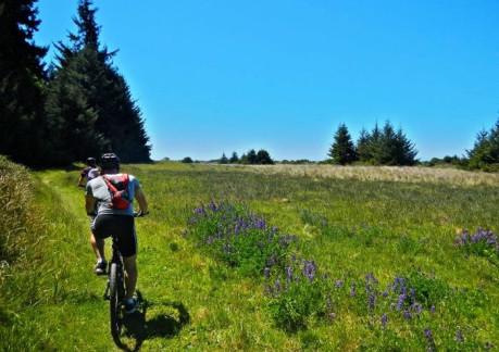 3758P3From Redwood Adventures website.jpg