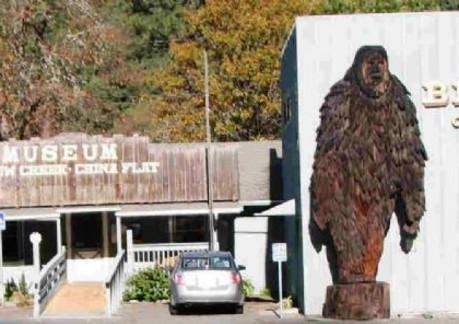 4125P3China Flat Bigfoot Museum.jpg