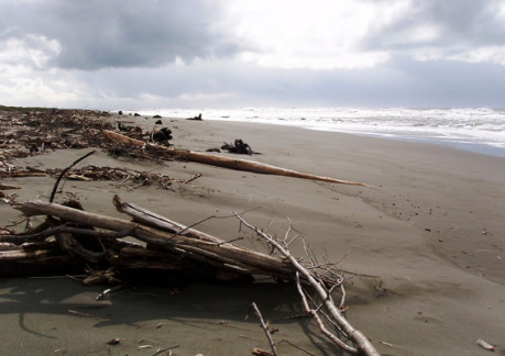 5113P3South Spit Humboldt Bay.jpg