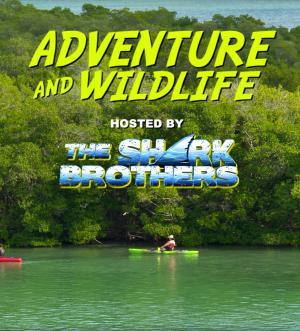 Adventure and Wildlife Series