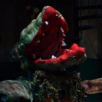 Little Shop of Horrors at Rainbow Stage