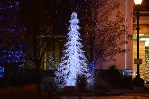 Louis Campau Square holiday lights downtown crystal tree