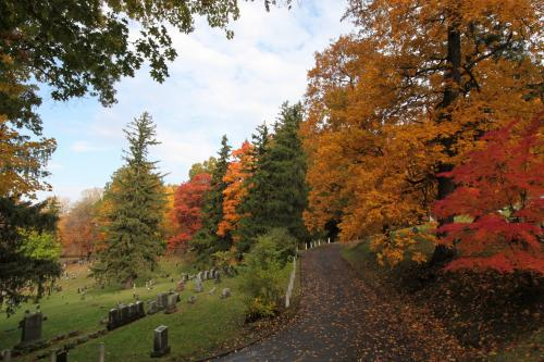Fall foliage in Mount Hope Cemetery in Rochester, NY