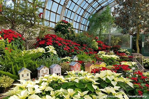 5 Chicago Winter Gardens to Add to Your Visit List | Choose Chicago