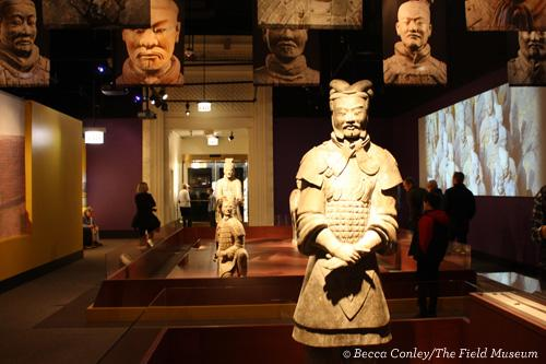 China's First Emperor and His Terracotta Warriors at The Field Museum