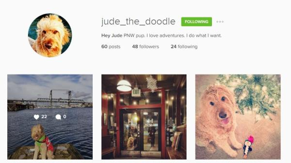 Jude Instagram account